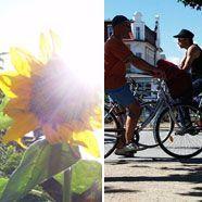 Eisenstadt setzt zukünftig auf E-Mobilität, Symbolbild