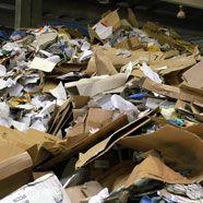 Tochter ließ Mutter in Müllbergen leben