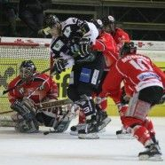 Powerplay half den Bulldogs zum Sieg