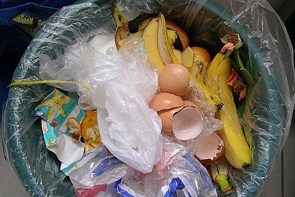 """Für die einen ist es Müll - die anderen eine Schatzkiste, in der sie nach Lebensmitteln """"tauchen"""""""