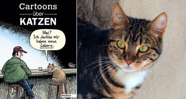 Wenn sich Zeichner dem Thema Katzen widmen, bleibt kein Klischee verschont