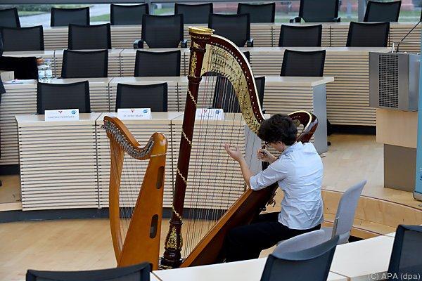 Gesine Dreyer stellte Instrument vor
