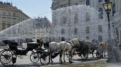 Große Hitze in der Wiener City: Freitag der bisher heißeste Tag