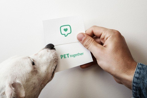 PETtogether_2
