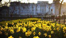 Frühlingshaftes Wetterin dieser Woche