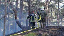 Waldbrände in Baden und Wiener Neustadt