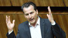 Team Stronach tritt nicht bei Wahl im Herbst an