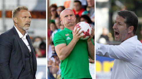 tipico-Bundesliga: So schätzendie Trainer die neue Saison ein