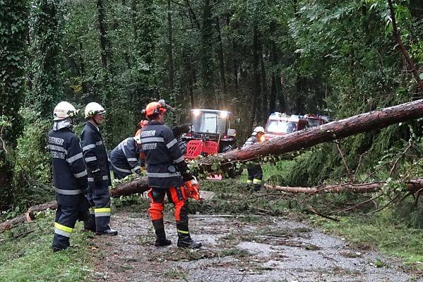 Die Feuerwehr verzeichnete über 200 Notrufe