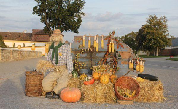 An zwei Wochenenden im September lädt das Schloss Hof zum Herbst-Garten-Fest.