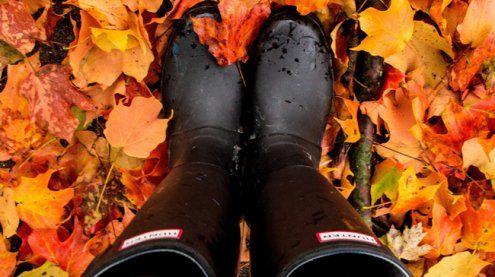 Wenn die Tage kürzer werden: Am Freitag ist offizieller Herbstbeginn