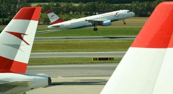 Noch im Steigflug passierte der Vogelschlag bei der in Wien gestarteten AUA-Maschine.