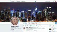 Trumps Twitter-Account lahmgelegt
