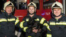 Brand: Bellender Hund rettete schlafendes Paar