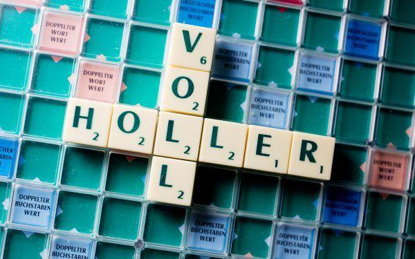 Vollholler ist das Wort des Jahres 2017.