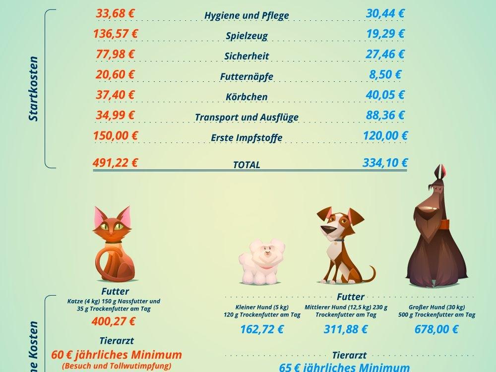 Haustiere Wie Viel Geld Kosten Uns Hund Und Katze Osterreich Vienna At