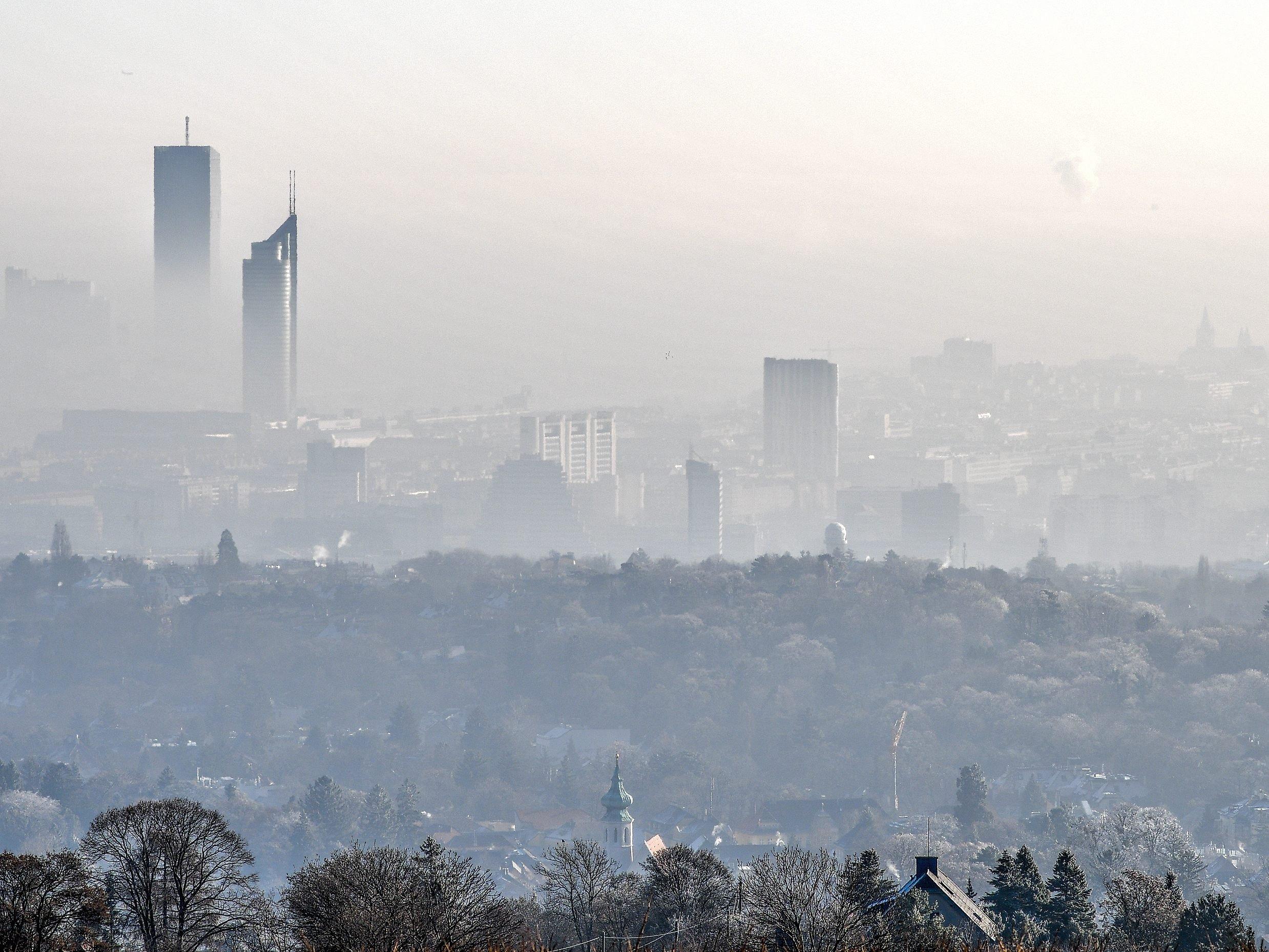 Wohnungspreise In Wien Weitere Verteuerung In Den Nächsten Jahren