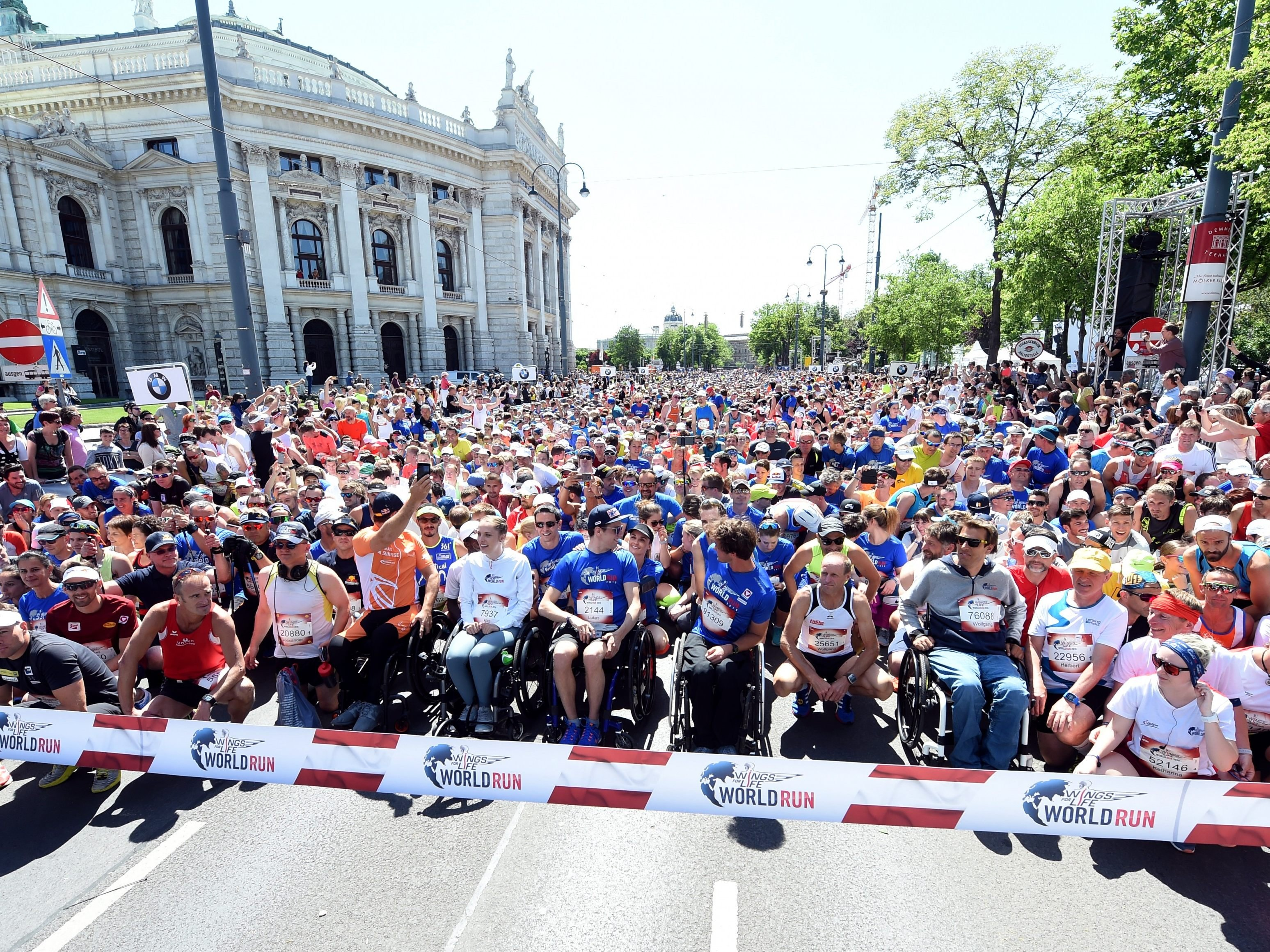 "Das war der ""Wings for Life Word Run"" in Wien."