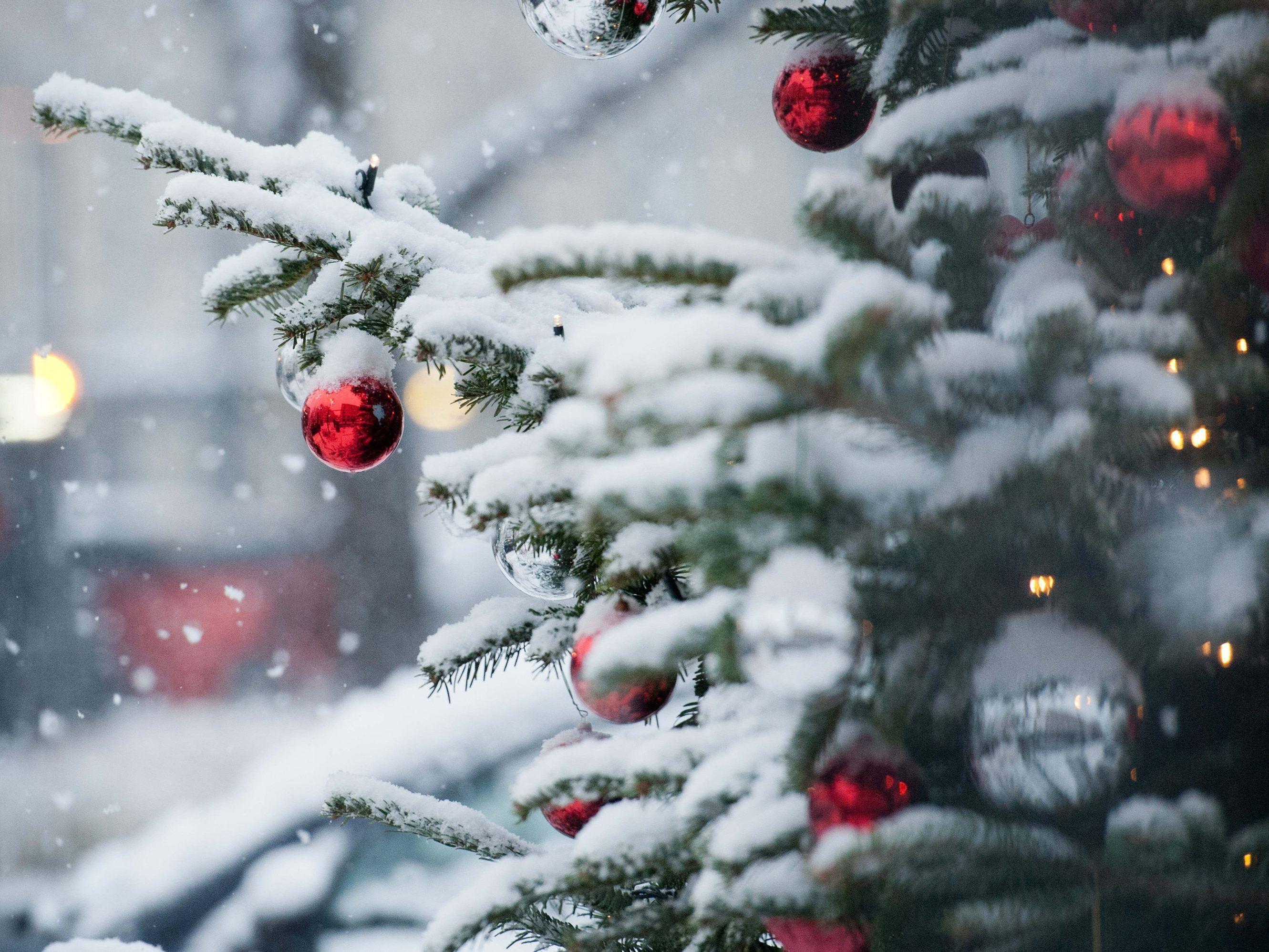 wei e weihnachten 2018 wie stehen die chancen auf schnee sterreich vienna at. Black Bedroom Furniture Sets. Home Design Ideas