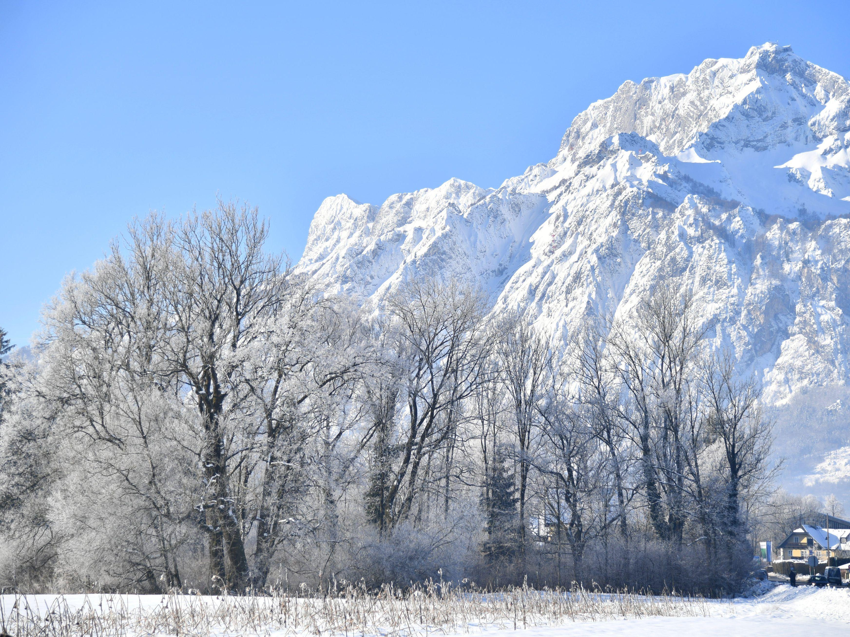 Schneefallgrenze österreich