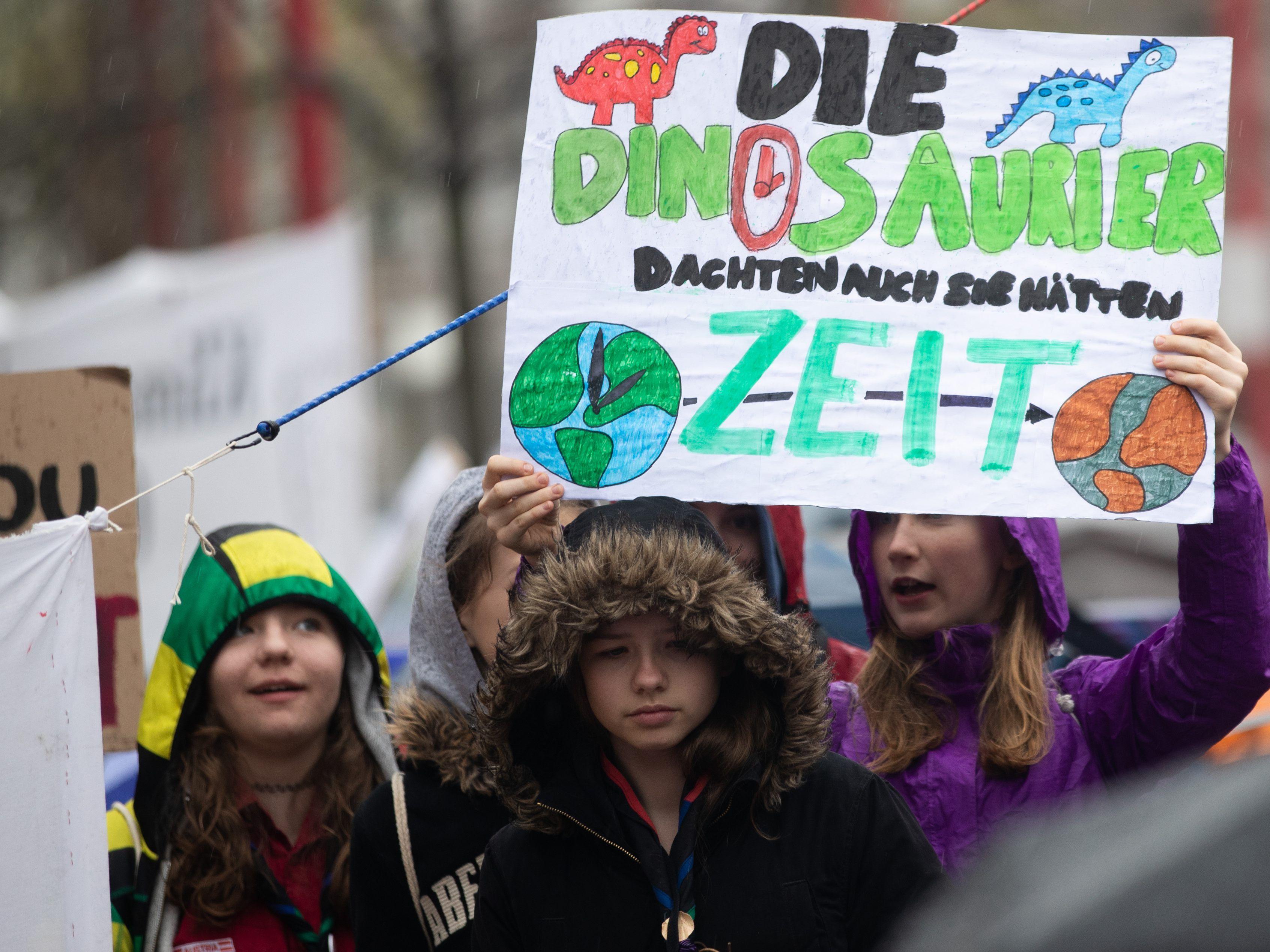 Klima Demo Wien News: Klima-Demo: Schüler Und NGOs Demontrierten Erneut