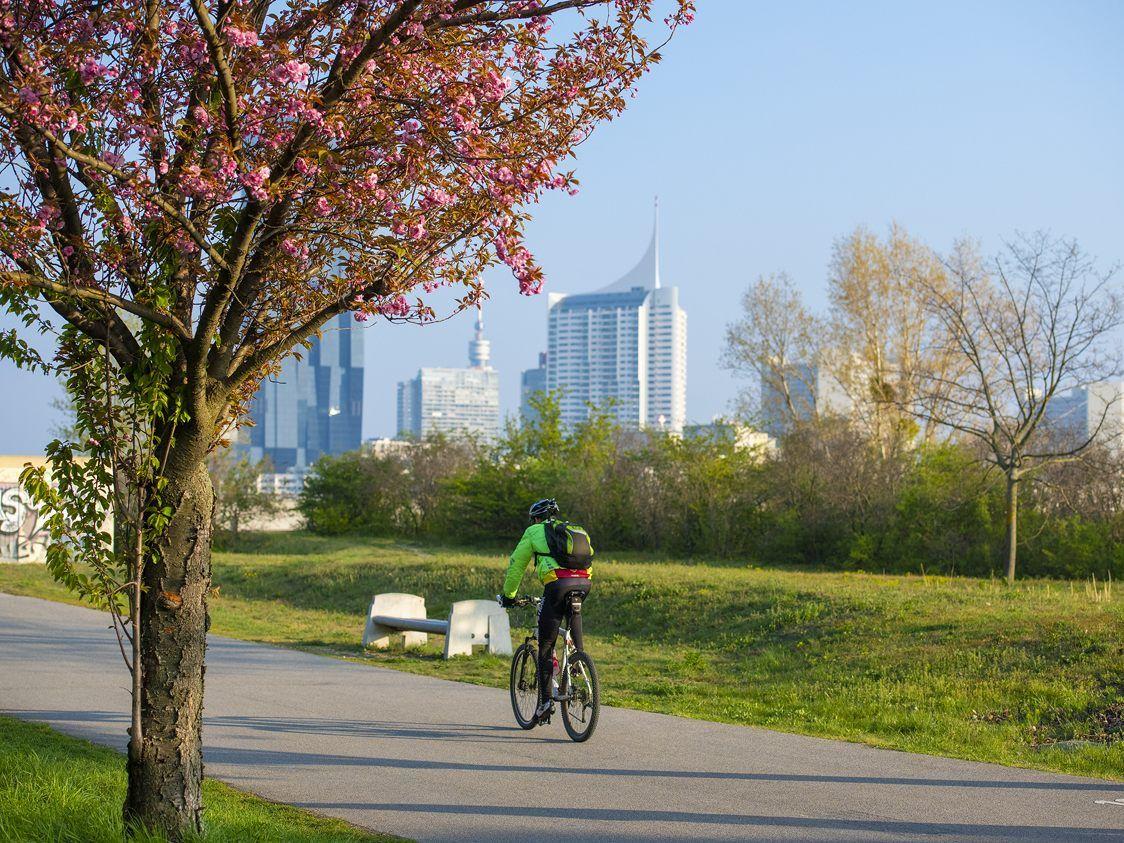 Grillen Chillen Und Co Auf Der Donauinsel Zeigt Sich Der Frühling